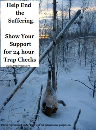 Help end the suffering. Show your support for 24 hour trap check